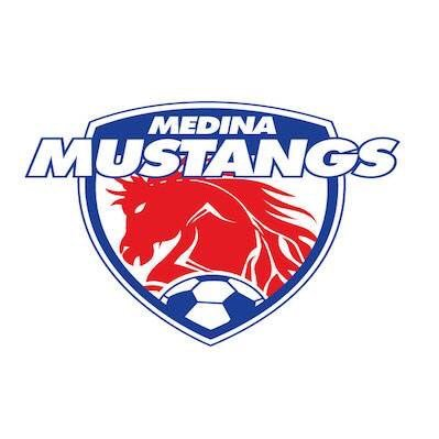 BDSL Manager Interview: Medina Mustangs